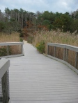 Welfleet Audubon Center recycled plastic wood boardwalk